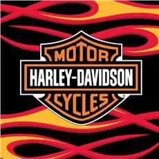 "Harley Davidson Flames Rug  39""  x 59"" | By DomesticBin"