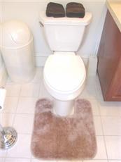 DECORATIVE PLUSH BATHROOM RUGS--CONTOUR RUG