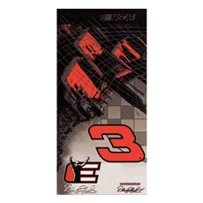 nascar-beach-towels