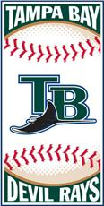 Tampa Bay  Rays Centerfield Beach Towel | By DomesticBin